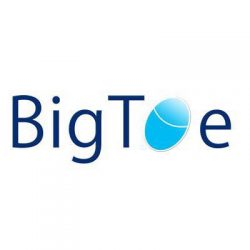 Big Toe Yoga Logo